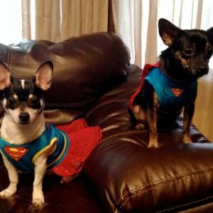 Q & M Superheros